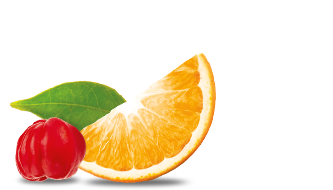 RS-Fruit-SF-Orange.png